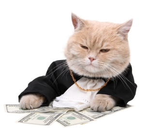 235 cat-money-gangster