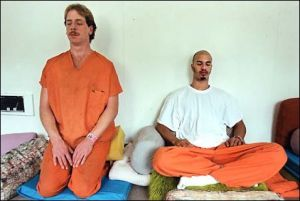 317 Meditator
